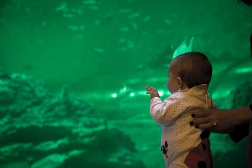 My daughter Hannah at the Aquarium - one of my biggest motivators